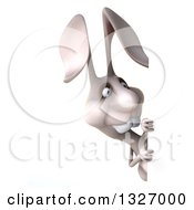 Clipart Of A 3d White Bunny Rabbit Looking Around A Sign Royalty Free Illustration by Julos