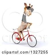 Clipart Of A 3d Business Giraffe Wearing Sunglasses And Riding A Bicycle To The Right Royalty Free Illustration