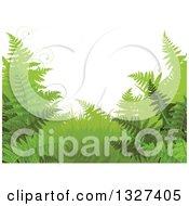 Clipart Of A Background Of Green Ferns And Tendrils Royalty Free Vector Illustration by Pushkin