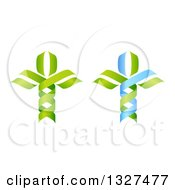 Clipart Of A 3d Green And Blue DNA Double Helix Trees Royalty Free Vector Illustration