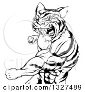 Clipart Of A Black And White Vicious Roaring Muscular Tiger Man Punching 2 Royalty Free Vector Illustration