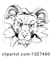 Clipart Of A Black And White Angry Snarling Ram Breaking Through A Wall Royalty Free Vector Illustration by AtStockIllustration