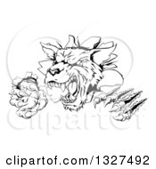 Clipart Of A Black And White Ferocious Wolf Slashing And Breaking Through A Wall 2 Royalty Free Vector Illustration