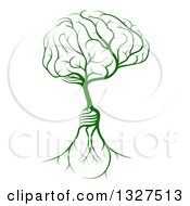 Clipart Of A Green Tree With Light Bulb Roots And A Brain Canopy Royalty Free Vector Illustration
