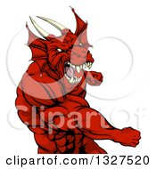 Clipart Of A Muscular Fighting Red Dragon Man Punching Royalty Free Vector Illustration