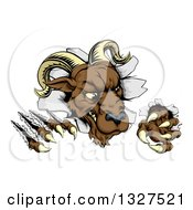 Clipart Of A Brown Vicious Ram Monster Clawing Through A Wall 2 Royalty Free Vector Illustration by AtStockIllustration
