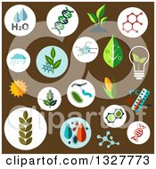 Clipart Of Flat Design Agricultural Crops Chemical Formulas Pests Models Of DNA And Cells Weather Sun Water And Temperature Control Symbols On Brown Royalty Free Vector Illustration