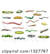 Clipart Of Cartoon Grubs Worms And Caterpillars Royalty Free Vector Illustration
