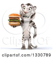 Clipart Of A 3d White Tiger Holding And Looking At A Double Cheeseburger Royalty Free Illustration
