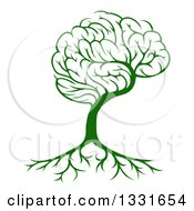 Clipart Of A Green Brain Tree And A Roots Royalty Free Vector Illustration