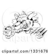 Clipart Of A Black And White Ferocious Wolf Slashing And Breaking Through A Wall 3 Royalty Free Vector Illustration
