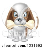 Clipart Of A Cartoon Happy White And Brown Dog Sitting With A Bone In His Mouth Royalty Free Vector Illustration