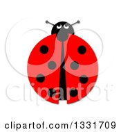 Clipart Of A Ladybug On White Royalty Free Illustration