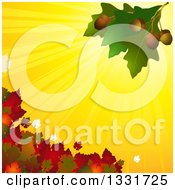Clipart Of 3d Green Oak Leaves With Acorns Over Yellow Sun Rays And Autumn Foliage Royalty Free Vector Illustration