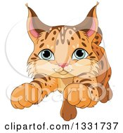 Clipart Of A Cute Baby Bobcat Cub Pouncing Royalty Free Vector Illustration