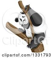 Clipart Of A Panda Climbing A Tree Royalty Free Vector Illustration