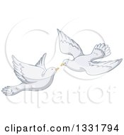 Clipart Of A White Pigeon Couple Flying About To Kiss Royalty Free Vector Illustration