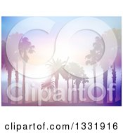 Clipart Of A Background Of Silhouetted Palm Trees On A Beach Against A Blurred Misty Ocean With Sunset Flares Royalty Free Vector Illustration