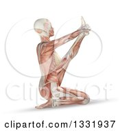 Clipart Of A 3d Anatomical Woman With Visible Muscles Stretching In A Yoga Pose On White Royalty Free Illustration by KJ Pargeter
