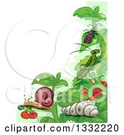 Clipart Of Garden Pests On Plants Royalty Free Vector Illustration