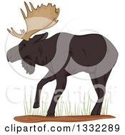 Clipart Of A Walking Moose In Grass Royalty Free Vector Illustration by BNP Design Studio