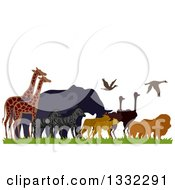 Clipart Of A Migrating African Animals Lions Ostriches Leopards Zebras Elephants And Giraffes Royalty Free Vector Illustration