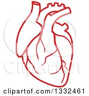 Clipart Of A Red Human Heart Royalty Free Vector Illustration by Vector Tradition SM