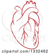 Red Human Heart 2
