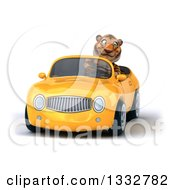 Clipart Of A 3d Tiger Driving A Yellow Convertible Car Royalty Free Illustration