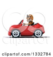 Clipart Of A 3d Tiger Wearing Sunglasses And Driving A Red Convertible Car Royalty Free Illustration