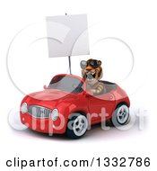 Clipart Of A 3d Tiger Wearing Sunglasses Holding A Blank Sign Roaring And Driving A Red Convertible Car Royalty Free Illustration