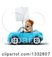Clipart Of A 3d Male Lion Driving A Blue Convertible Car And Holding A Blank Sign Royalty Free Illustration