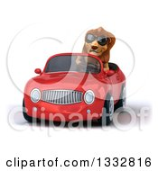 Clipart Of A 3d Male Lion Wearing Sunglasses And Driving A Red Convertible Car Royalty Free Illustration