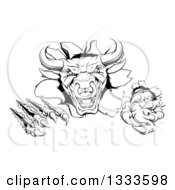 Clipart Of A Black And White Mad Aggressive Bull Monster Clawing Through A Wall 2 Royalty Free Vector Illustration