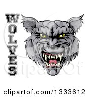 Clipart Of A Ferocious Gray Wolf Mascot Head And Text Royalty Free Vector Illustration