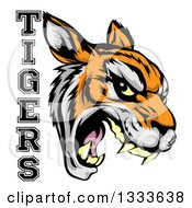 Clipart Of A Vicious Snarling Tiger Mascot Face And Text Royalty Free Vector Illustration