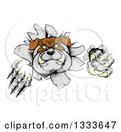 Clipart Of A Vicious Tough Bulldog Monster Shredding Through A Wall 2 Royalty Free Vector Illustration