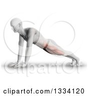 Clipart Of A 3d Anatomical Man Stretching In A Yoga Pose Or Doing Push Ups With Visible Leg And Ab Muscles On Shaded White Royalty Free Illustration by KJ Pargeter