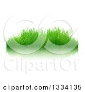 Clipart Of A 3d Patch Of Fresh Green Grass Over White With A Reflection Royalty Free Illustration