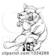 Clipart Of A Black And White Vicious Muscular Wolf Man Swinging A Punch Royalty Free Vector Illustration by AtStockIllustration