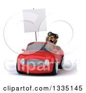 Clipart Of A 3d Tiger Wearing Sunglasses Roaring Holding A Blank Sign And Driving A Red Convertible Car 2 Royalty Free Vector Illustration