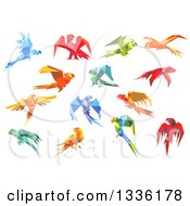Clipart Of Origami Paper Parrots 6 Royalty Free Vector Illustration