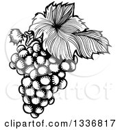 Clipart Of A Sketched Black And White Doodle Of A Leaf And Bunch Of Grapes Royalty Free Vector Illustration