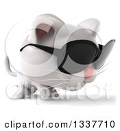 Clipart Of A 3d White Kitten Wearing Sunglasses And Walking To The Right Royalty Free Illustration
