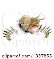Clipart Of A 3d Roaring Angry Triceratops Dinosaur Shredding Through A Wall Royalty Free Vector Illustration by AtStockIllustration