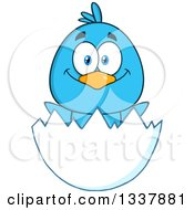 Cartoon Happy Blue Bird In An Egg Shell
