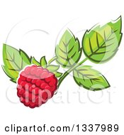 Clipart Of A Cartoon Raspberry And Leaves Royalty Free Vector Illustration