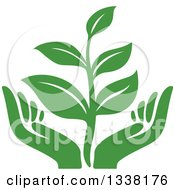 Clipart Of A Seedling Plant Over Green Hands Royalty Free Vector Illustration