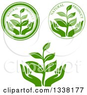 Clipart Of Seedling Plant And Hand Green Natural Product Labels Royalty Free Vector Illustration