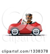 Clipart Of A 3d Tiger Wearing Sunglasses Giving A Thumb Up And Driving A Red Convertible Car 2 Royalty Free Illustration
